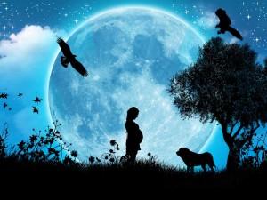lunar fertility